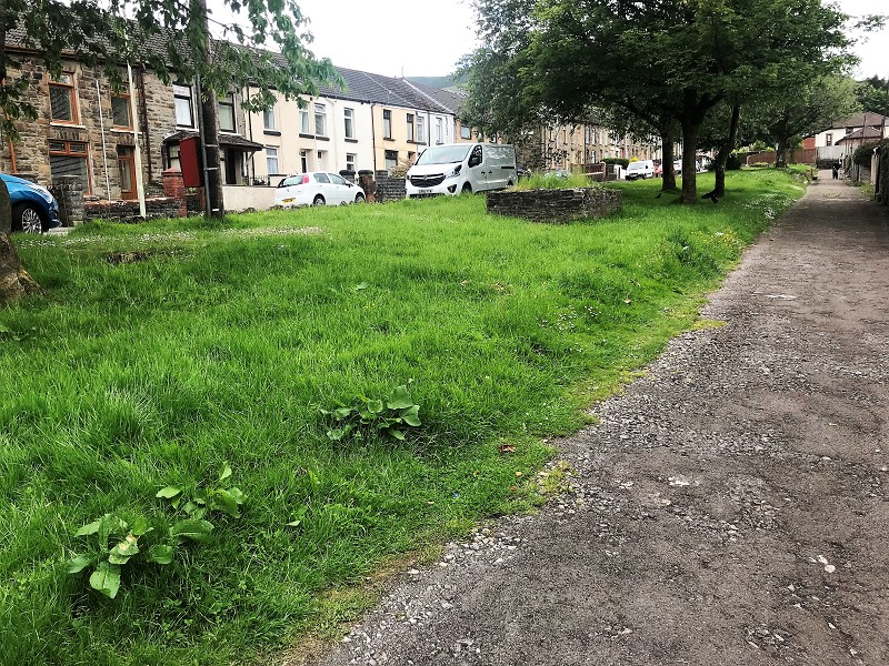 Public Green to Rear of Property
